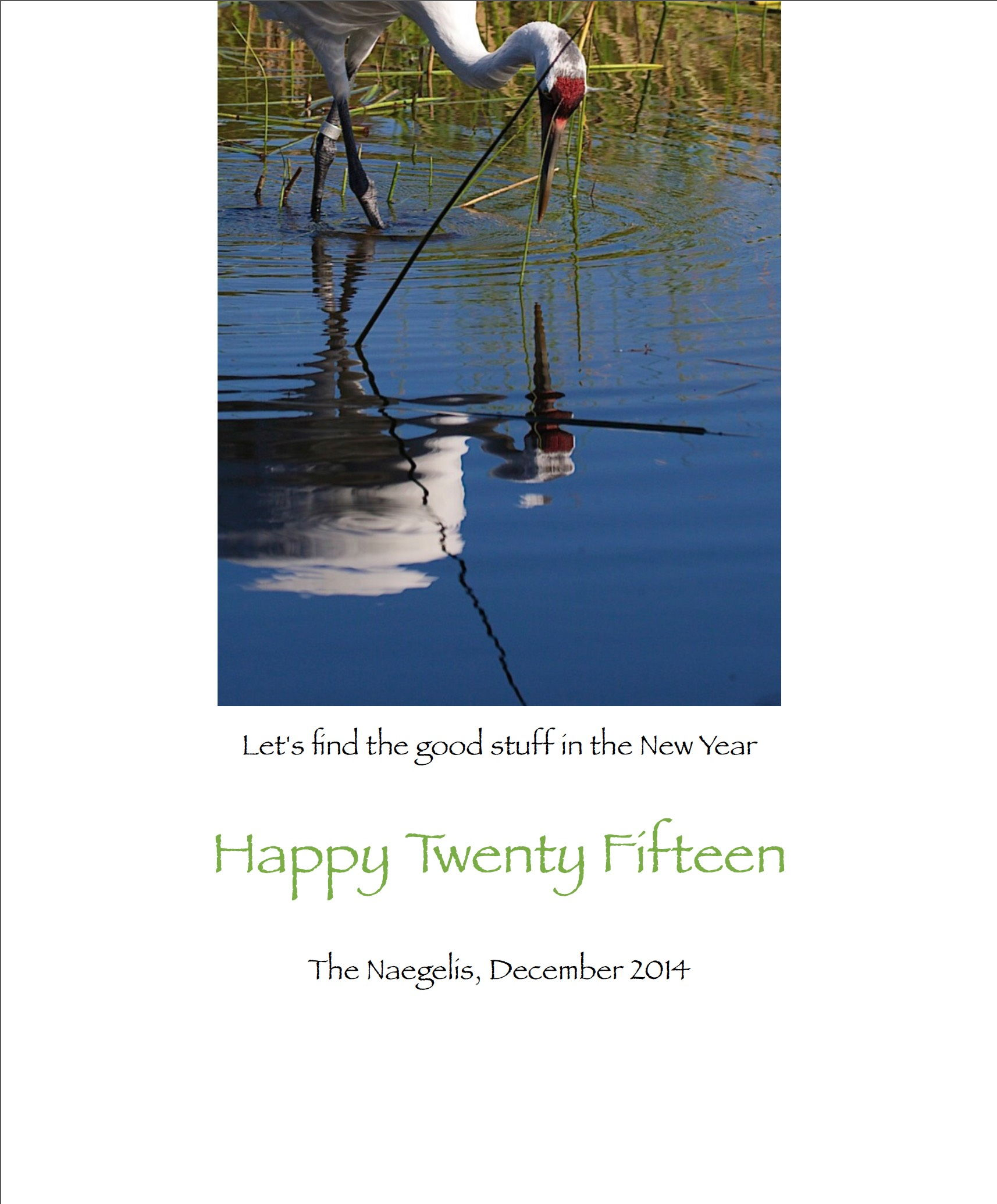 New Year Greetings From Mignon Wolf Mignon Naegeli