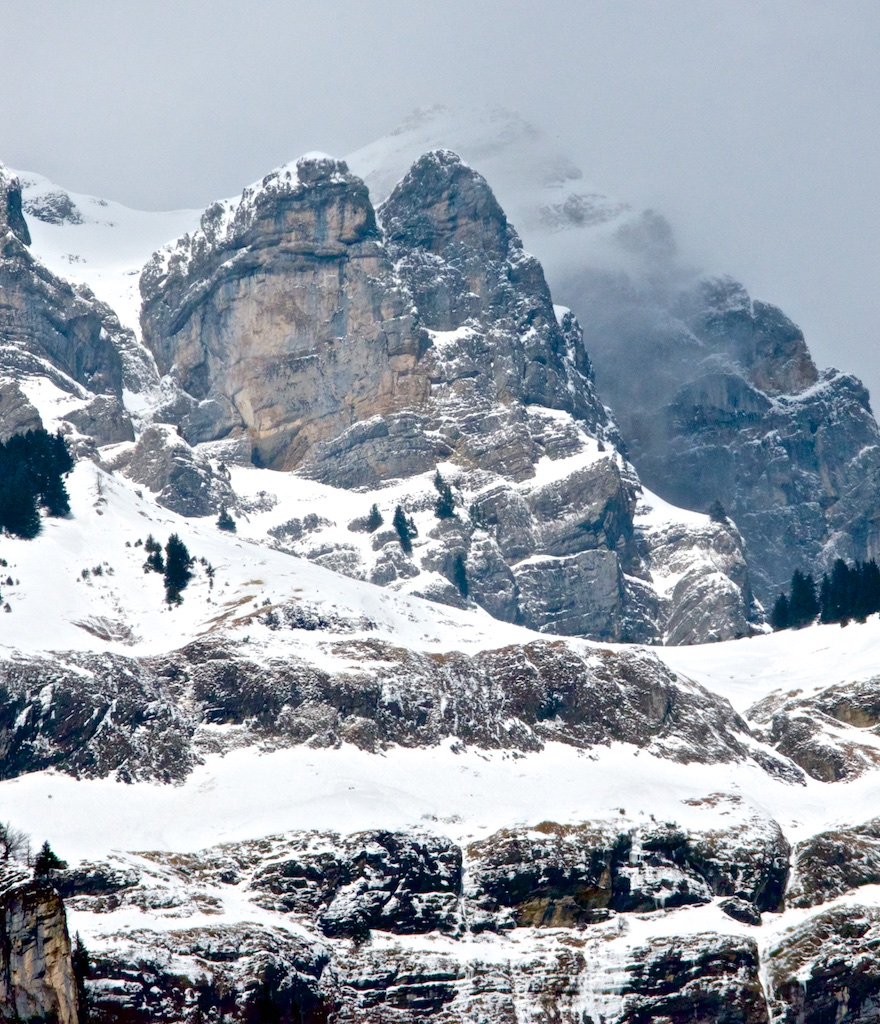 Among snow and ice, a few firs cling to a rocky mountain face in Switzerland